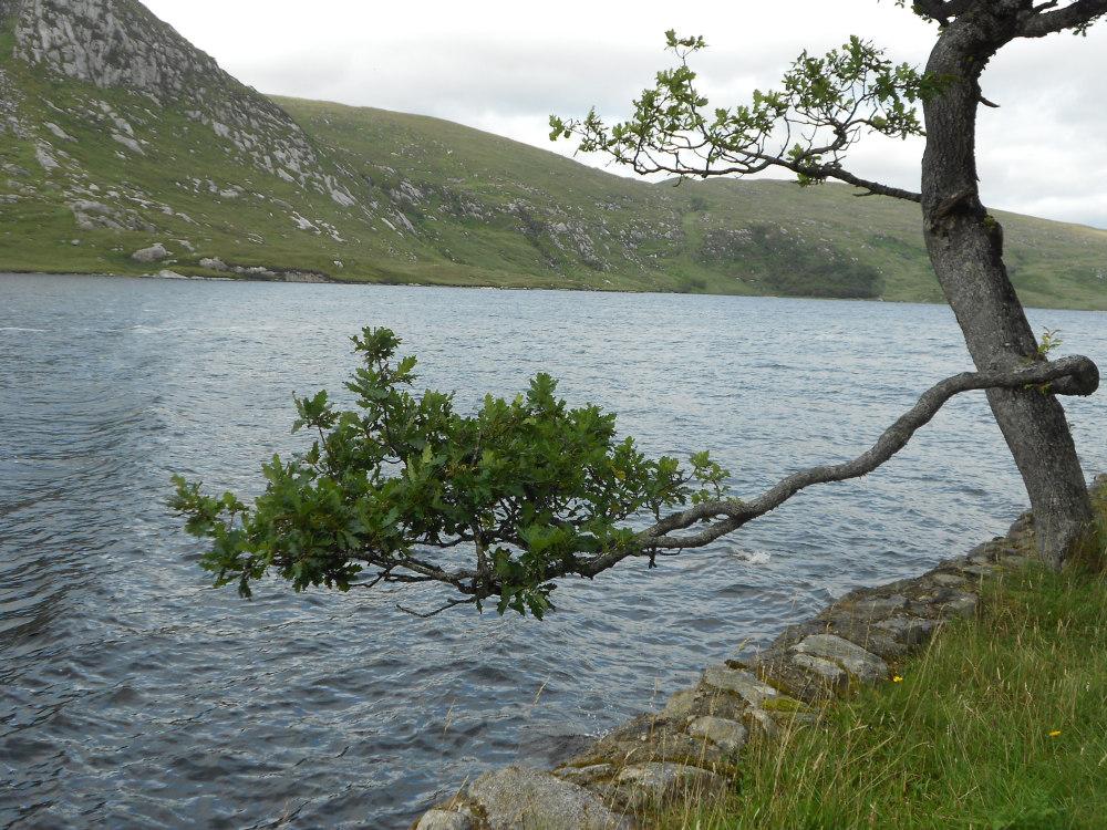 Lough Veagh